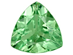 TS053<br>Tanzanian Tsavorite Garnet .75ct Minimum 6.5mm Trillion
